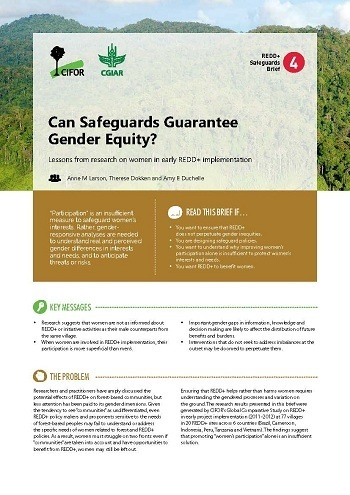 Can safeguards guarantee gender equity?: Lessons from research on women in early REDD+ implementation