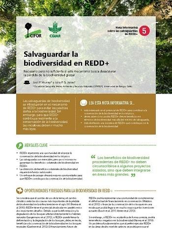 Salvaguardar la biodiversidad en REDD+: Necesario pero no suficiente si este mecanismo busca desacelerar la pérdida de la biodiversidad global