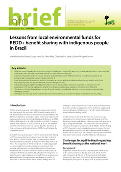 Lessons from local environmental funds for REDD+ benefit sharing with indigenous people in Brazil