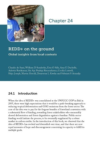 REDD+ on the ground: Global insights from local contexts