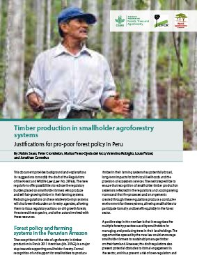 Timber production in smallholder agroforestry systems: Justifications for pro-poor forest policy in Peru