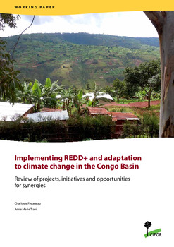 Implementing REDD+ and adaptation to climate change in the Congo Basin: Review of projects, initiatives and opportunities for synergies