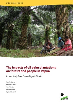 The impacts of oil palm plantations on forests and people in Papua: A case study from Boven Digoel District