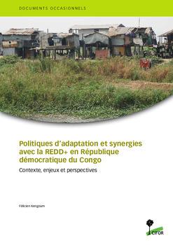 Politiques d'adaptation et synergies avec la Redd+ en République démocratique du Congo: Contexte, enjeux et perspectives