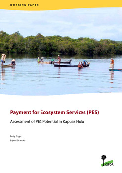 Payment for Ecosystem Services (PES): Assessment of PES Potential in Kapuas Hulu