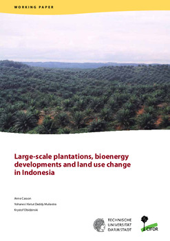 Large-scale plantations, bioenergy developments and land use change in Indonesia