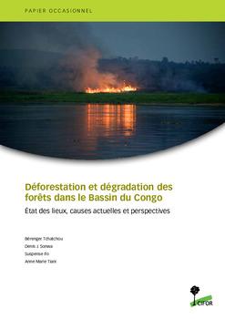 Déforestation et dégradation des forêts dans le Bassin du Congo: État des lieux, causes actuelles et perspectives
