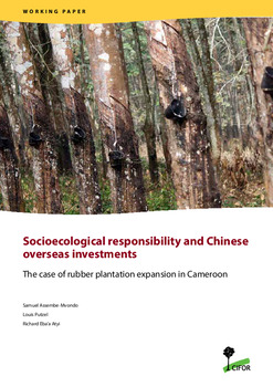 Socioecological responsibility and Chinese overseas investments: The case of rubber plantation expansion in Cameroon