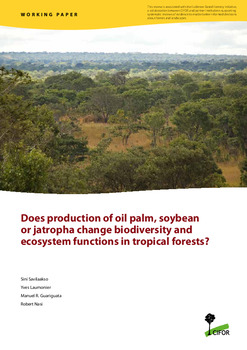 Does production of oil palm, soybean, or jatropha change biodiversity and ecosystem functions in tropical forests