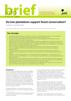 Do tree plantations support forest conservation?