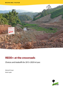 REDD+ at the crossroads: Choices and tradeoffs for 2015 - 2020 in Laos