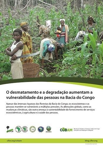 O desmatamento e a degradação aumentam a vulnerabilidade das pessoas na Bacia do Congo