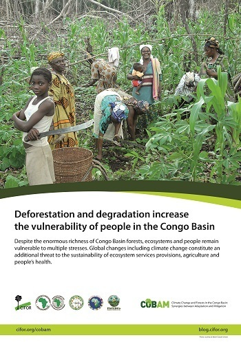 Deforestation and degradation increase the vulnerability of people in the Congo Basin