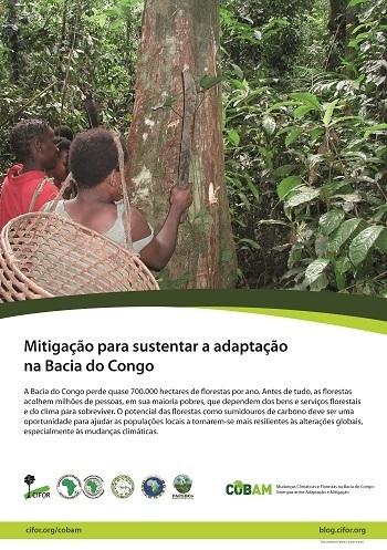 Mitigação para sustentar a adaptação na Bacia do Congo