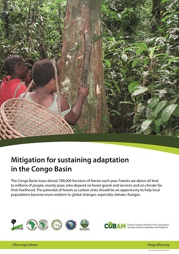 Mitigation for sustaining adaptation in the Congo Basin