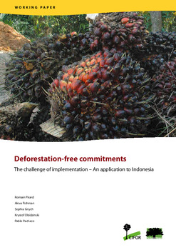 Deforestation-free commitments: The challenge of implementation - An application to Indonesia