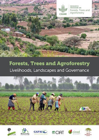 CGIAR Research Program on Forests, Trees and Agroforestry : Livelihoods, Landscapes and Governance