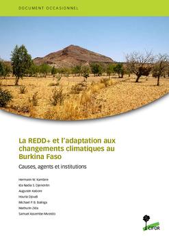 La REDD+ et l'adaptation aux changements climatiques au Burkina Faso: Causes, agents et institutions