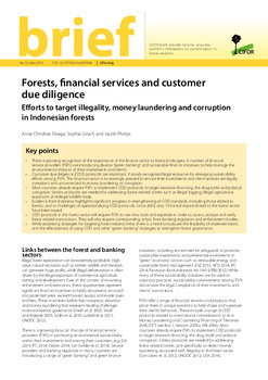 Forests, financial services and customer due diligence: Efforts to target illegality, money laundering and corruption in Indonesia