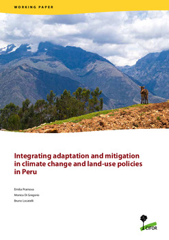 Integrating adaptation and mitigation in climate change and land-use policies in Peru