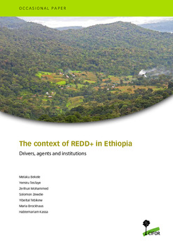 The context of REDD+ in Ethiopia: Drivers, agents and institutions
