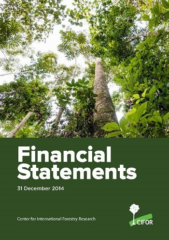 Financial statements 2014: 31 December 2014
