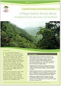 Village forests (hutan desa): empowerment, business or burden?