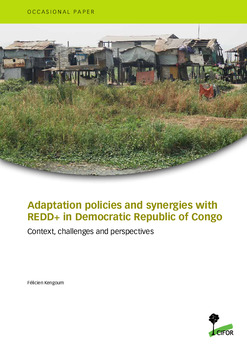 Adaptation policies and synergies with REDD+ in Democratic Republic of Congo: Context, challenges and perspectives