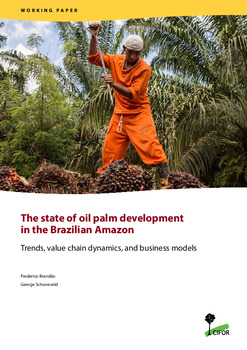 The state of oil palm development in the Brazilian Amazon: Trends, value chain dynamics, and business models