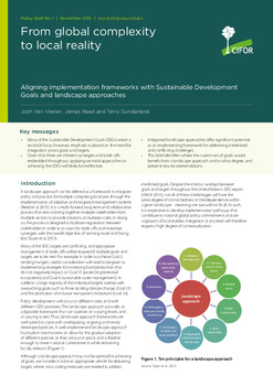From global complexity to local reality: Aligning implementation frameworks with Sustainable Development Goals and landscape approaches