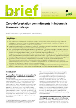 Zero-deforestation commitments in Indonesia: Governance challenges