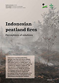Indonesian peatland fires: Perceptions of solutions