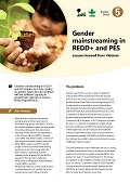 Gender mainstreaming in REDD+ and PES: Lessons learned from Vietnam