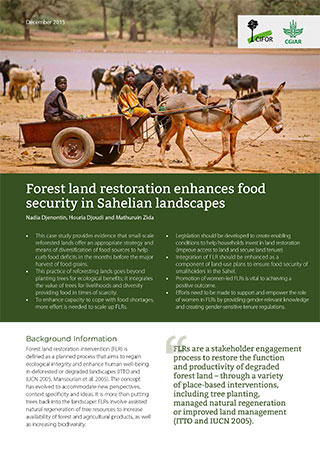 Forest land restoration enhances food security in Sahelian landscapes