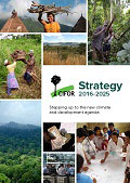 CIFOR Strategy 2016-2025: Stepping up to the new climate and development agenda