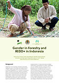 Gender in Forestry and REDD+ in Indonesia