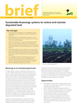 Sustainable bioenergy systems to restore and valorize degraded land