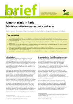 A match made in Paris: Adaptation-mitigation synergies in the land sector