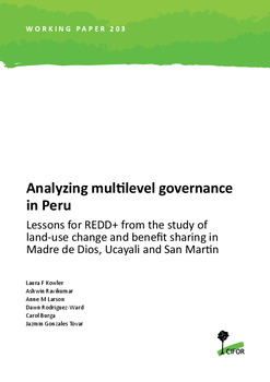 Analyzing multilevel governance in Peru: Lessons for REDD+ from the study of land-use change and benefit sharing in Madre de Dios, Ucayali and San Martin