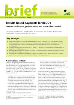 Results-based payments for REDD+: Lessons on finance, performance, and non-carbon benefits