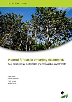 Planted forests in emerging economies: Best practices for sustainable and responsible investments