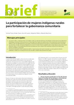 La participación de mujeres indígenas rurales para fortalecer la gobernanza comunitaria