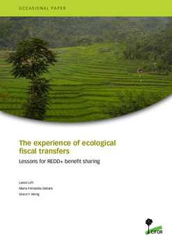 The experience of ecological fiscal transfers: Lessons for REDD+ benefit sharing