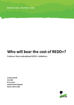Who will bear the cost of REDD+? Evidence from subnational REDD+ initiatives