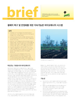 Sustainable bioenergy systems to restore and valorize degraded land [Korean]