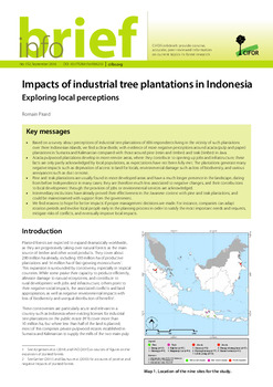 Impacts of industrial tree plantations in Indonesia: Exploring local perceptions