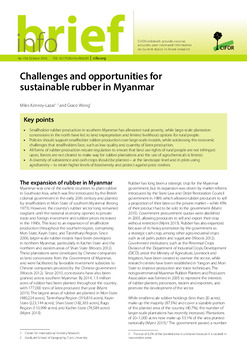 Challenges and opportunities for sustainable rubber in Myanmar
