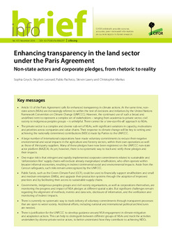Enhancing transparency in the land sector under the Paris Agreement: Non-state actors and corporate pledges, from rhetoric to reality