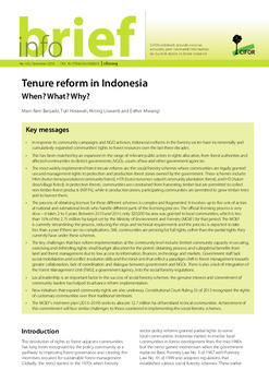 Forest tenure reform in Indonesia: When? What? Why?