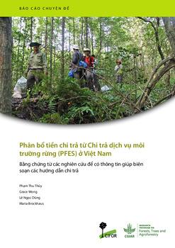 Phân bổ tiền chi trả từ Chi trả dịch vụ môi trường rừng (PFES) ở Việt Nam: Bằng chứng từ các nghiên cứu để có thông tin giúp biên soạn các hướng dẫn chi trả